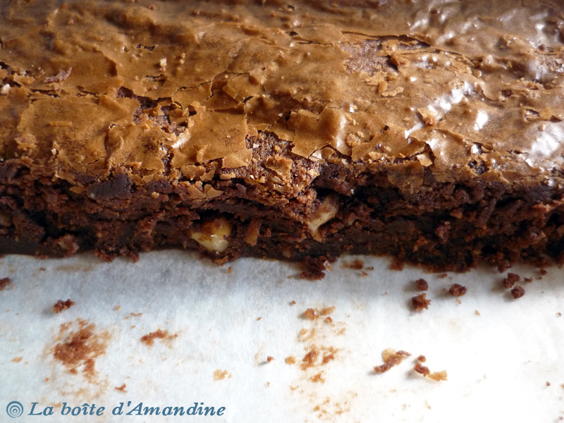 photo de Brownie