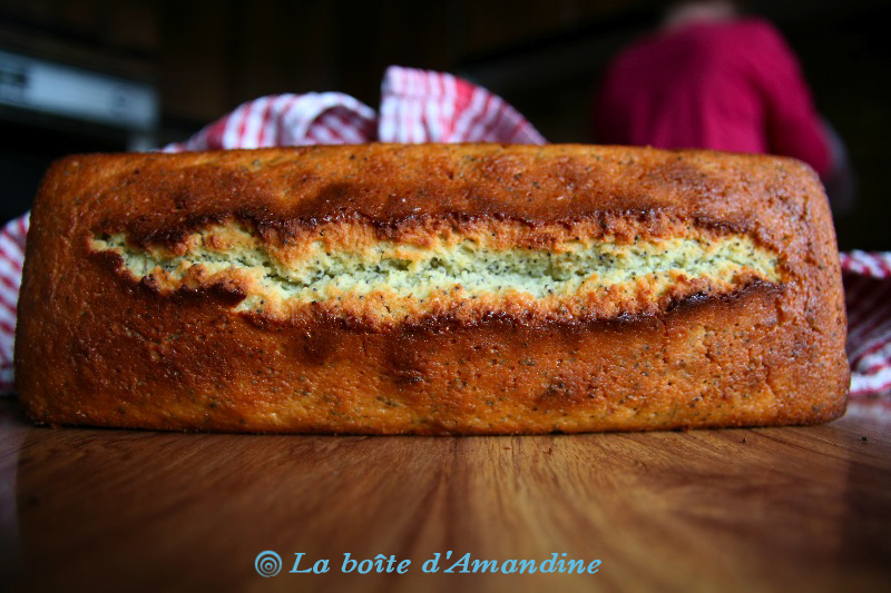 photo de Cake citron pavot